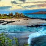 Tourico Vacations Reviews the Galapagos Islands