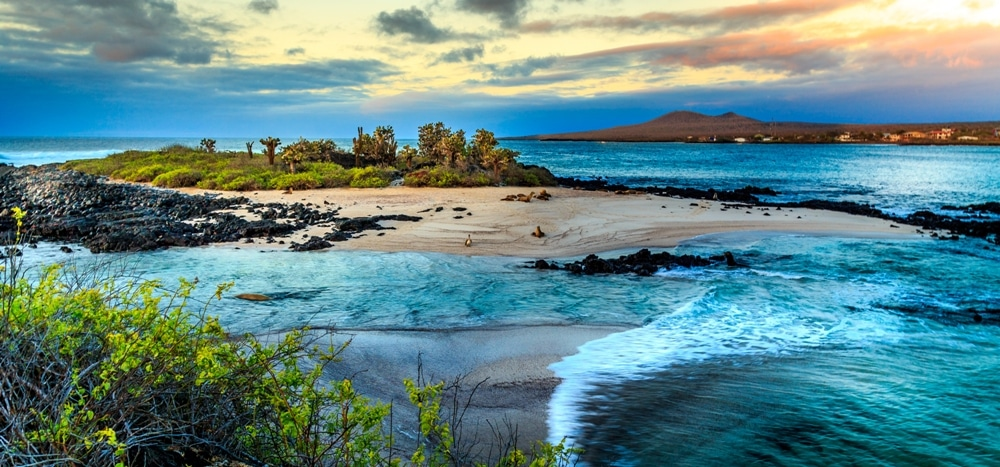 Tourico Vacations Reviews The Galapagos Islands Tourico Vacations - Galapagos vacations